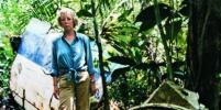 Авиакатастрофа в Перу: выпускница школы упала с 3 тысяч метров в джунгли к крокодилам и спаслась
