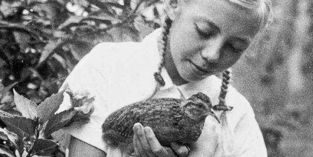 Маленькая Джулиана и ручная тинаму, в честь которой назвали биостанцию Panguana. Девочка ещё не знала, что очень скоро ей придётся иметь дело с куда менее безобидными существами.