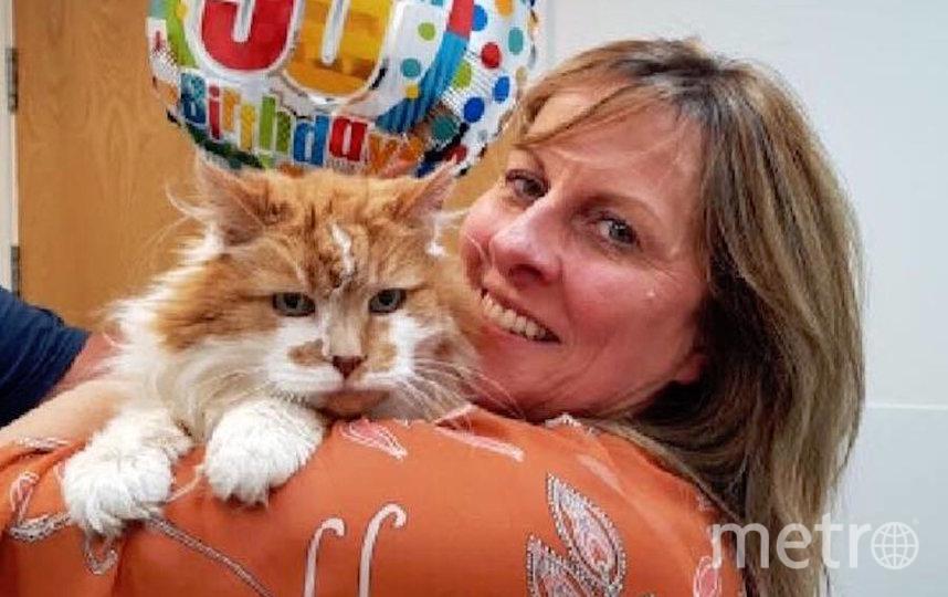 Эту фотографию Мишель и Раббла опубликовала британская ветклиника на своей странице в Facebook в честь 30-летия кота. Фото скриншот Facebook City Vets, Exeter
