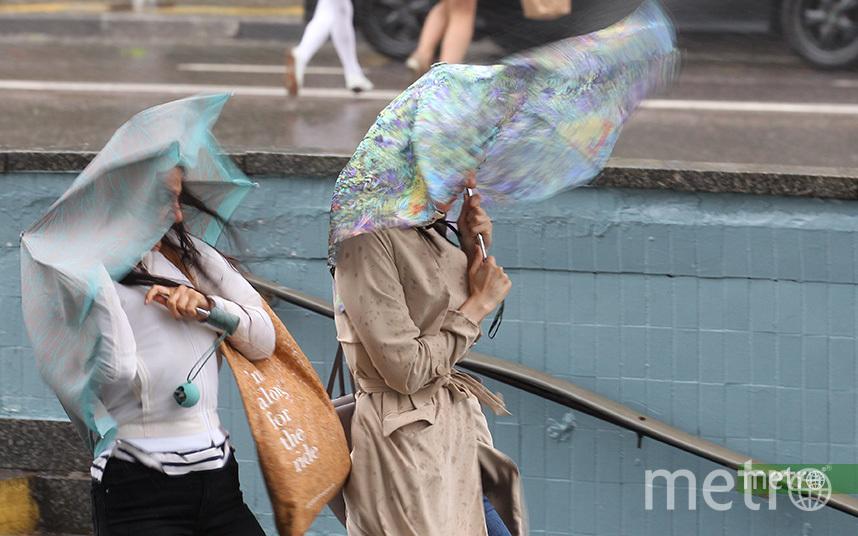При грозах ветер усилится в порывах 12-17 м/с. Фото Василий Кузьмичёнок