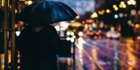 Жителей Петербурга на протяжении всего июля ожидают дожди