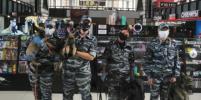 В Петербурге пополнился отряд хвостатых полицейских