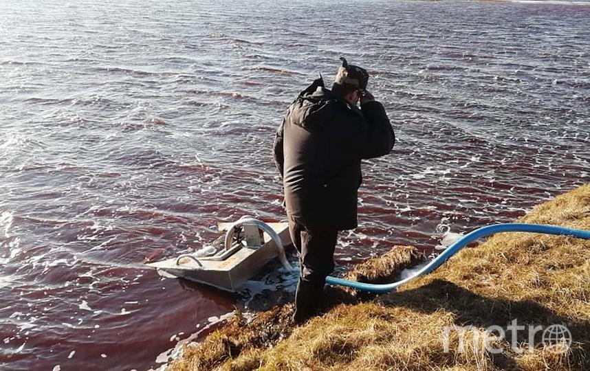 Ущерб от разлива топлива в Норильске оценен в 148 миллиардов рублей. Фото AFP