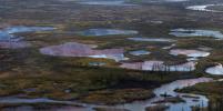 Стало известно, сколько составил ущерб экологии от разлива топлива в Норильске