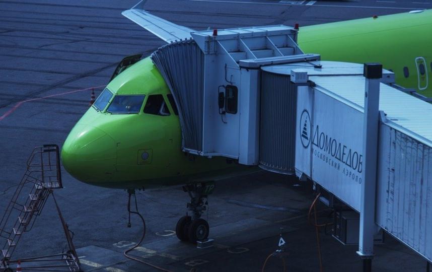 В первое время после открытия терминал D будет обслуживать внутрироссийские рейсы. Фото Pixabay