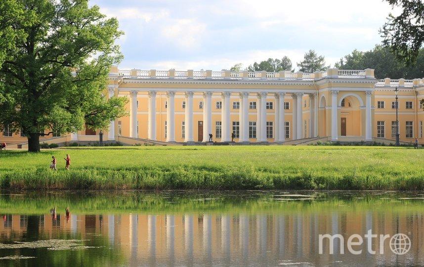 """В Александровском дворце сейчас ведутся масштабные работы по реставрации. Фото pixabay.com, """"Metro"""""""