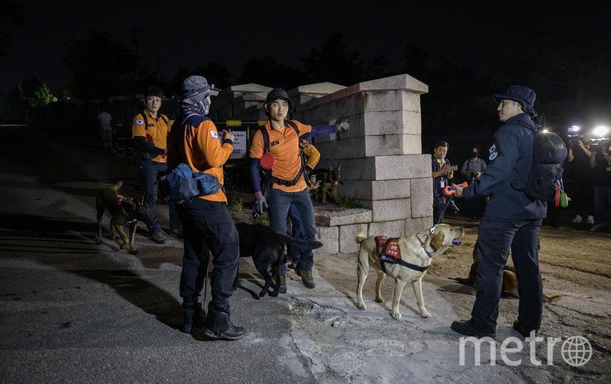 В поисковой операции принимали участие 580 сотрудников полиции и работников скорой медицинской помощи, а также полицейские собаки. Фото AFP