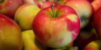В Петербурге резко подорожали яблоки: проверку начала антимонопольная служба