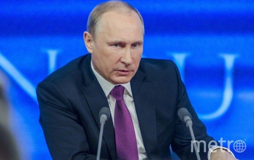 Президент России Владимир Путин. Фото Pixabay.