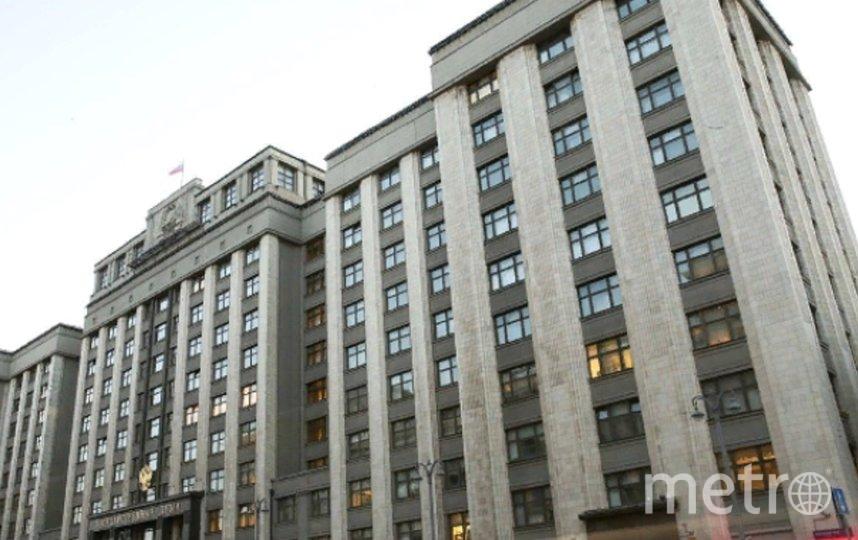 Законопроект внесли в Госдуму. Фото uma.gov.ru.