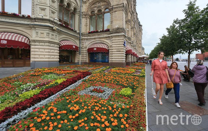 """""""Цвет цветов, возможно, требуемый глазу витамин"""", – сказала как-то писатель и эссеист Галина Туз. Фото Василий Кузьмичёнок, """"Metro"""""""