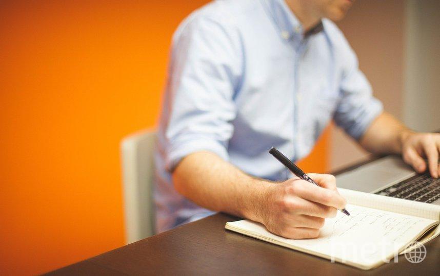 Остались востребованы специалисты в сфере IT. Фото Pixabay