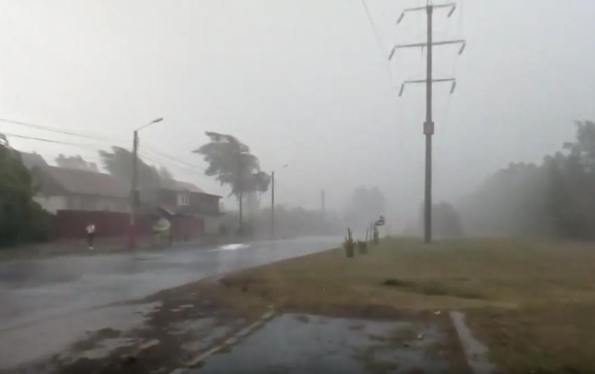 В области повалено более 100 деревьев, припаркованные автомобили оказались под завалами. Фото Скриншот Youtube