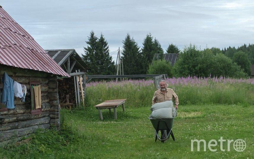 """В деревне Гришино во время сбора листа всегда ждут гостей, от помощников здесь не отказываются. Фото Алена Бобрович, """"Metro"""""""