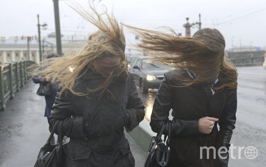 В Петербурге ожидается сильный ветер. Фото Getty., Getty