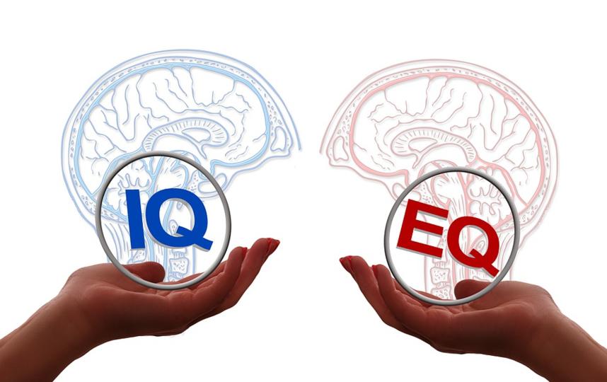 Учёные отмечают: Интеллект важен, если вы хотите добиться успеха, но избежать провала больше помогают другие качества. Фото pixabay.com