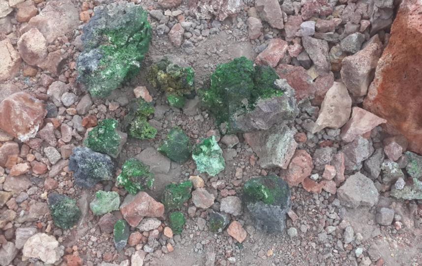 """Отобранные образцы минералов. Фото https://spbu.ru/, """"Metro"""""""