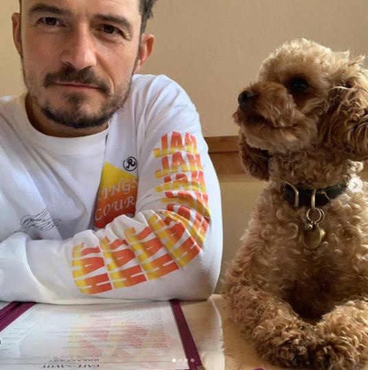 В память о своём компаньоне Блум сделал новую татуировку в виде имени собаки на левой груди. Фото instagram @orlandobloom