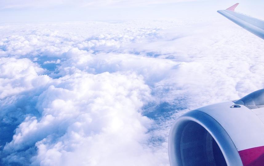 Крупнейшие авиакомпании США и Европы призывают тестировать пассажиров на коронавирус для возобновления трансатлантических рейсов. Фото pixabay.com