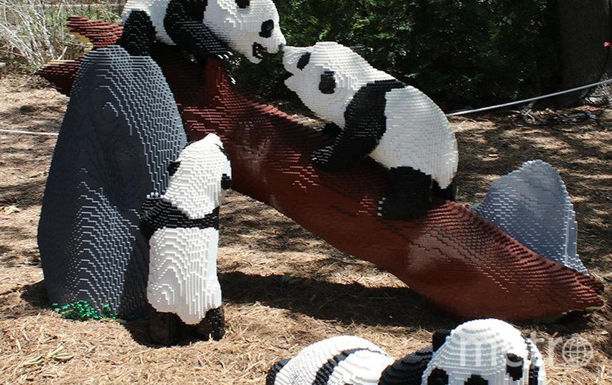 На создание этой скульптуры ушло 405 часов и было использовано 53 460 деталек. Фото San Antonio Zoo