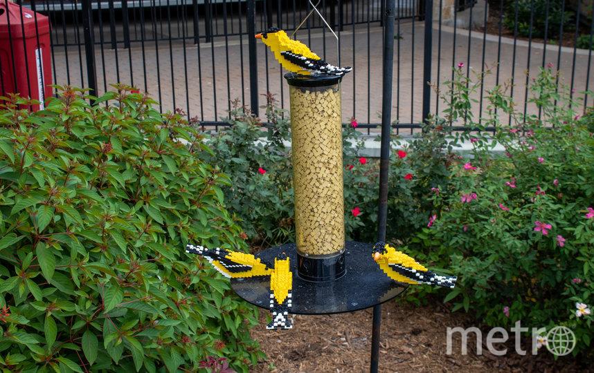 На создание всех экспонатов ушло более 3 млн кирпичиков LEGO. Фото San Antonio Zoo