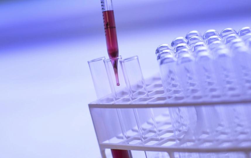Анализ на самые распространенные онкологические заболевания. Фото Pixabay