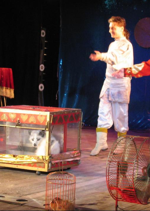 Вячеслав Чернов. Фокусы с животными. Фото teatrmagic.jimdo.com