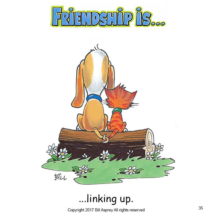 Дружба это быть связанными. Фото Bill Asprey