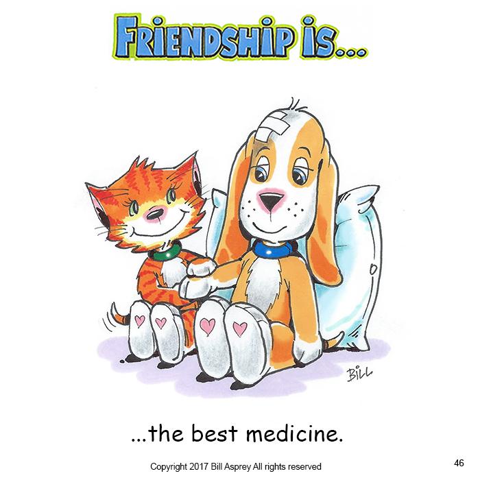 Дружба это лучшее лекарство. Фото Bill Asprey