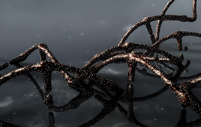 Именно это исследование поможет создать новое средство для борьбы со страшной болезнью. Фото Pixabay