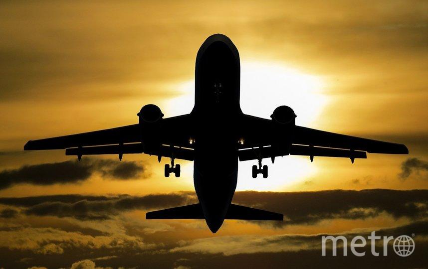 Экипаж самолёта попытался разнять дерущихся. Фото Pixabay
