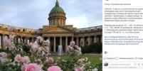 Циклон принесет кратковременные дожди в Петербург