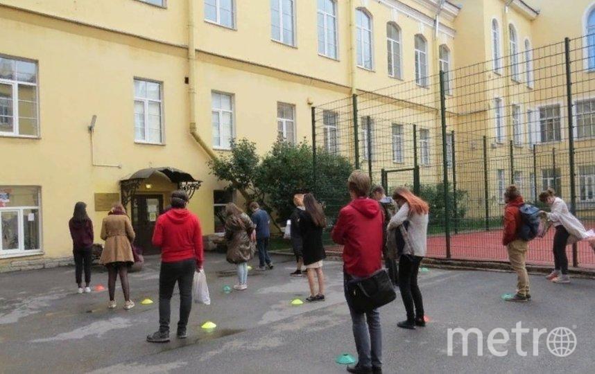 Подвели итоги сдачи ЕГЭ. Фото k-obr.spb.ru.