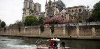 В Париже приступили к реставрации органа в сгоревшем соборе Нотр-Дам-де-Пари