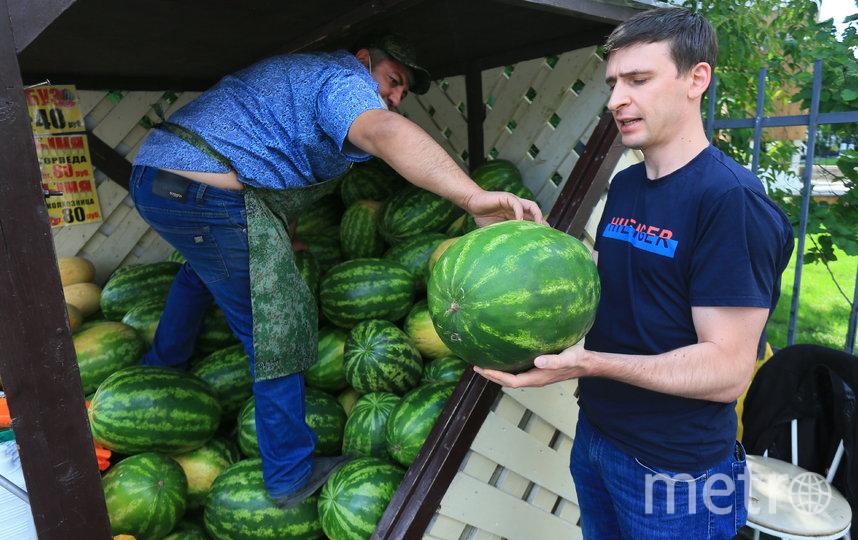 Репортёр Metro после советов Элчина сам выбрал себе арбузы. Фото Василий Кузьмичёнок