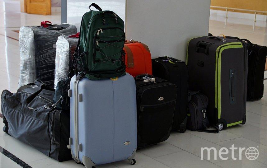 К исследованию багажа были подключены сотрудники пограничного контроля, врач и прокуратура. Фото Pixabay