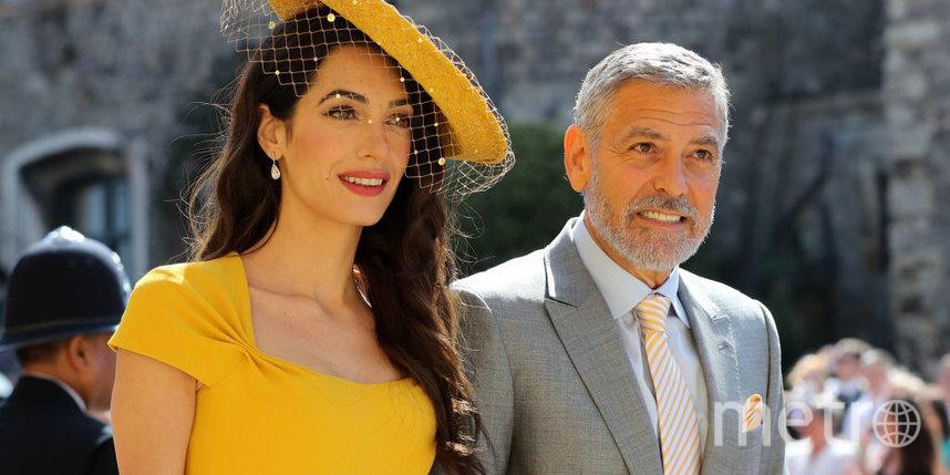 Джордж и Амаль Клуни пожертвовали 100 тысяч долларов после взрыва в Бейруте