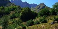 В Абхазию на курорты начнут ходить поезда из трёх городов России