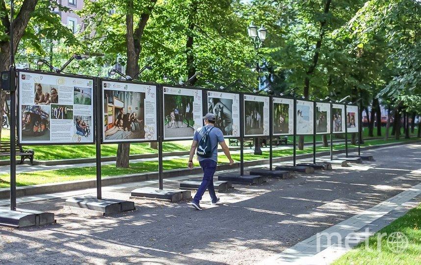 Выставки продлятся до 3 сентября. Фото Пресс-служба Департамента труда и социальной защиты населения города Москвы | скриншот mos.ru