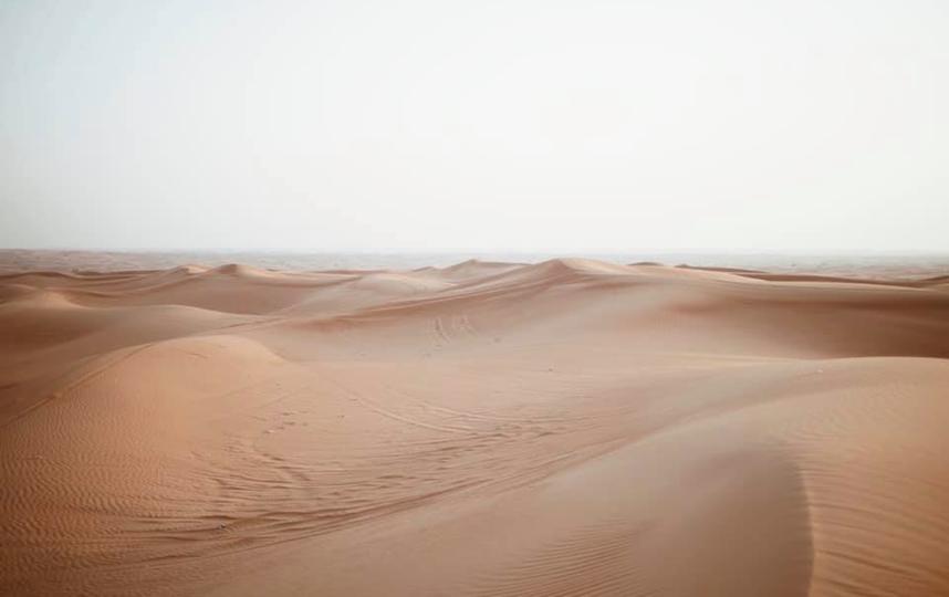 Снимок с песками Елены Захаровой был размещён на сайте Фотосток бесплатных фотографий. Фото unsplash.com