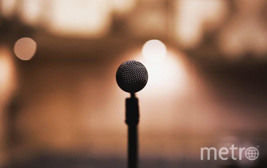 """Фестиваль проходит при поддержке Правительства Санкт-Петербурга. Фото pixabay.com, """"Metro"""""""