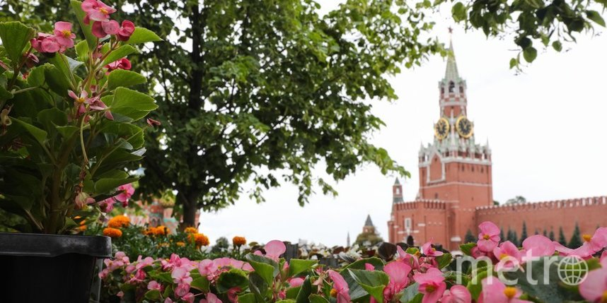 Москвичей ожидает тёплая и сухая погода