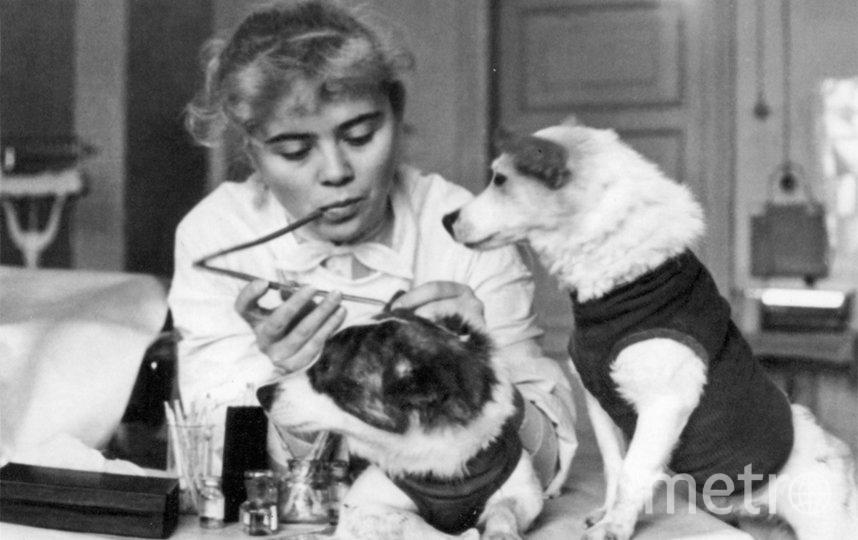 Четвероногие космонавты - собаки Белка и Стрелка. Фото roscosmos.ru.