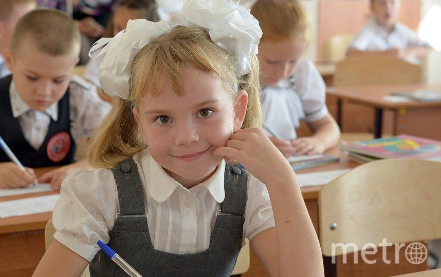 Школьница в первом классе. Фото Pixabay