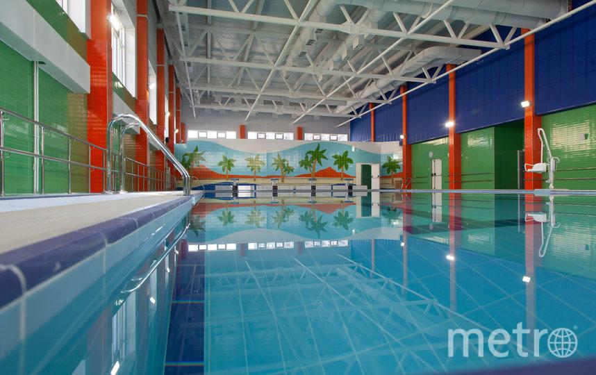 В новых школах есть бассейны и удобные спортивные залы. Фото «Главстрой Санкт-Петербург»