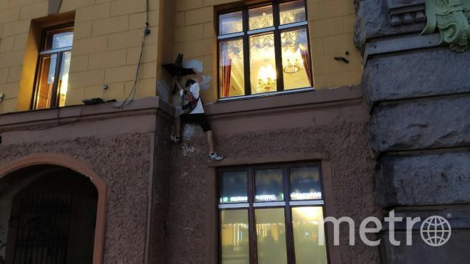 Школьник ограбил кота Елисея. Фото vk.com/spb_today.