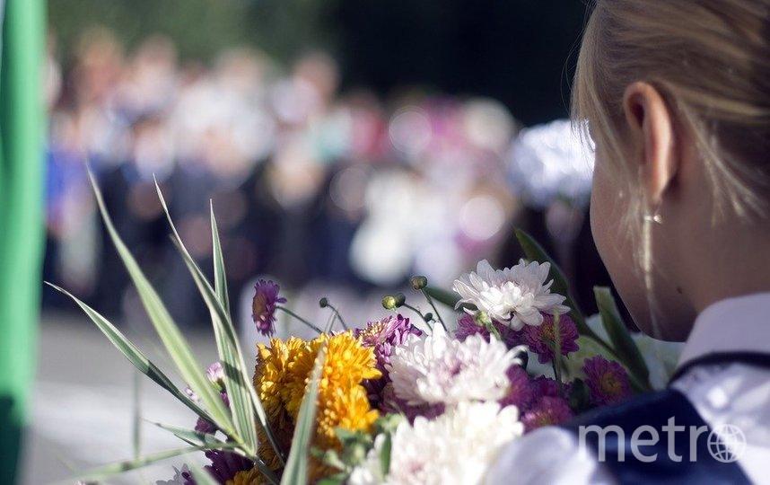 В этом году в Петербурге линейки первого сентября пройдут для первых и 11 классов. Фото pixabay.com
