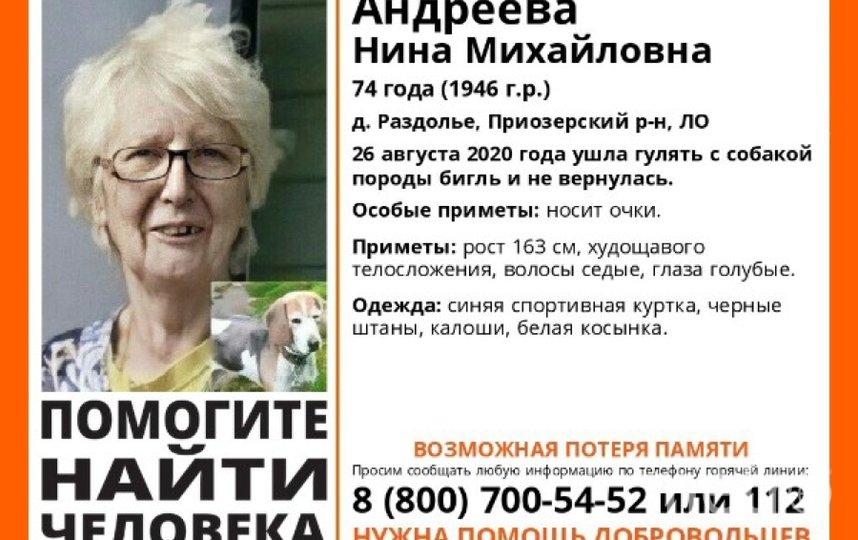 Андрееву Нину Михайловну разыскивают все неравнодушные. Фото https://vk.com/wall-41515336_78125