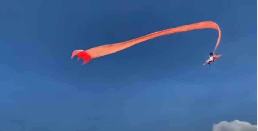 Ребенка унесло на змее. Фото Скриншот Youtube