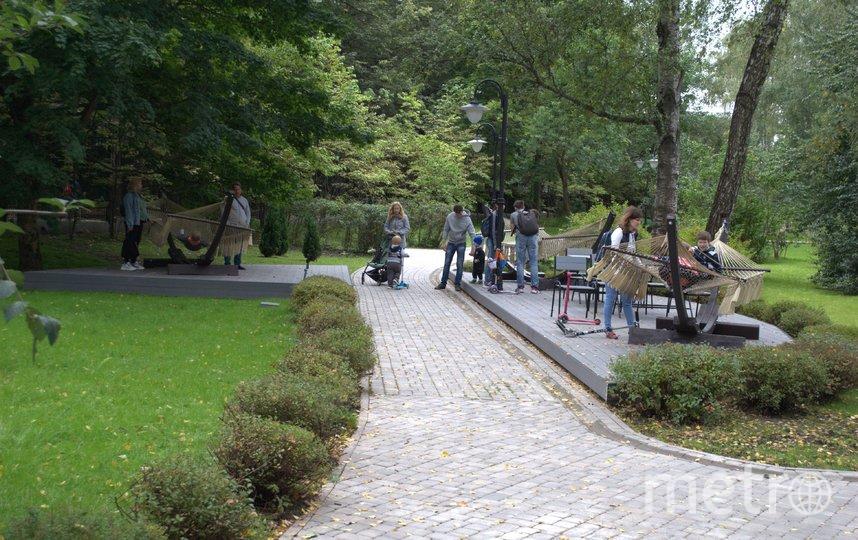 Любимое место посетителей сада – зона с гамаками. Фото Иван Тереховский